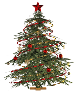 christmas_tree_png_stock_by_jumpfer_stock-d6wqhfr